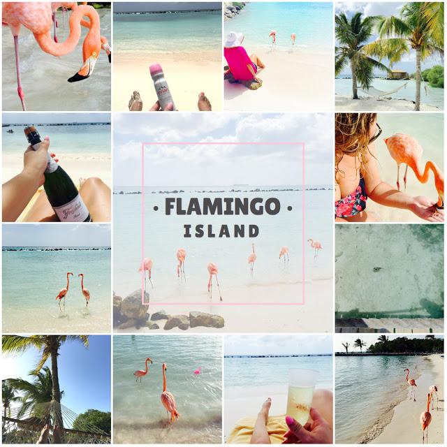 flamingo island aruba travel guide aruba travel blogger travel blog aruba city guide