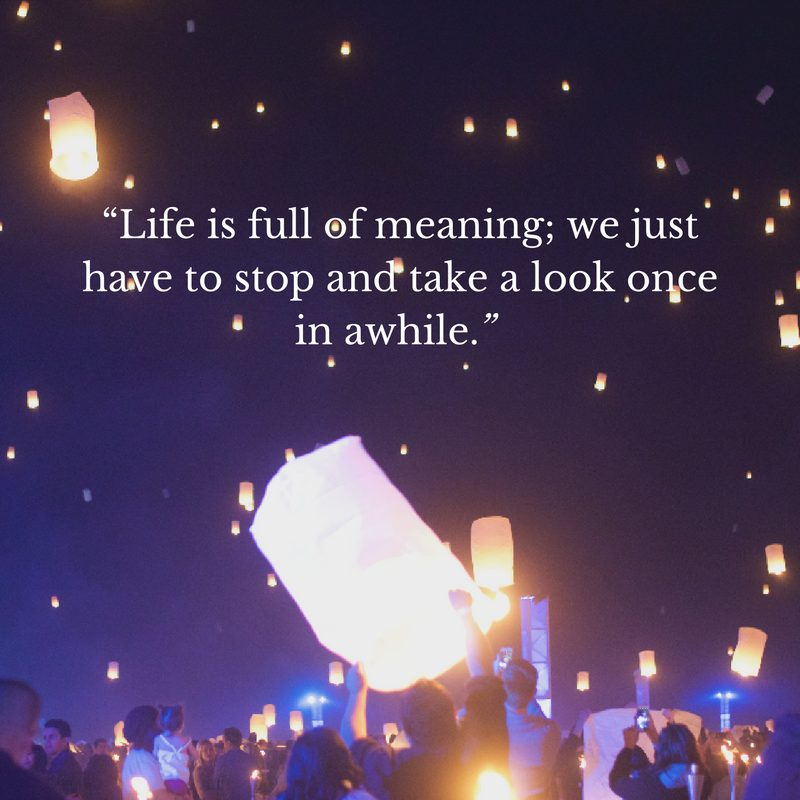 life is full of meaning we just have to stop and take a look once in awhile