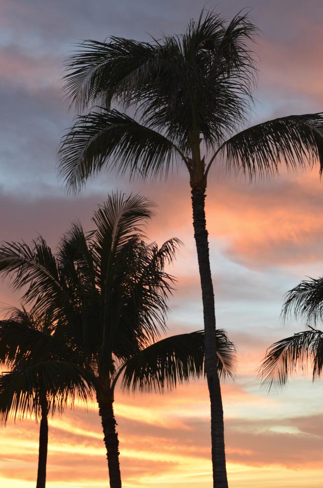 Sunset Ko Olina Oahu - CommuniKait - Kait Hanson