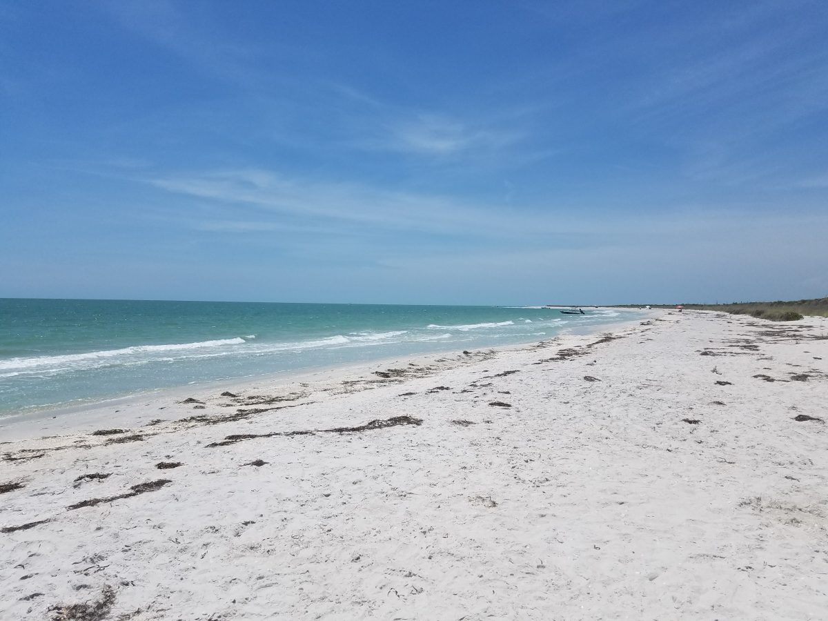 Cayo Costa Island is a remote island off the coast of Fort Myers & Sanibel and has little tourists but so much to see and do!