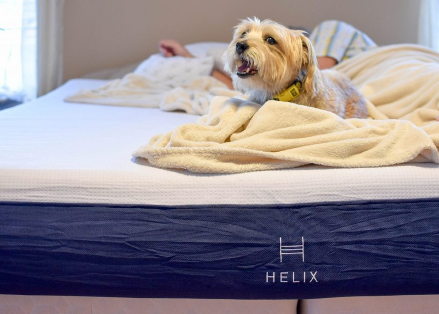 helix sleeping travel blogger