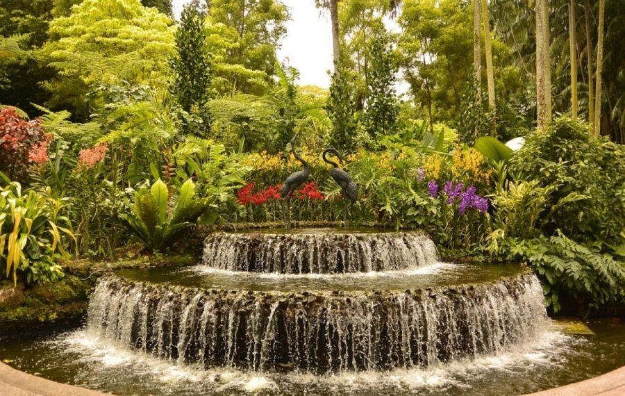 Botanical Garden singapore