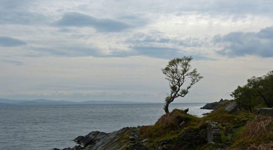 Scotland's Mesmerizing Trails