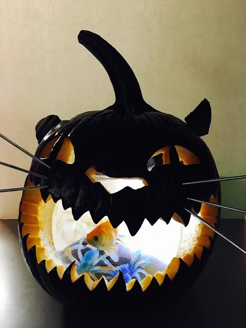 Diy Spooky Black Cat Pumpkin Verbal Gold Blog