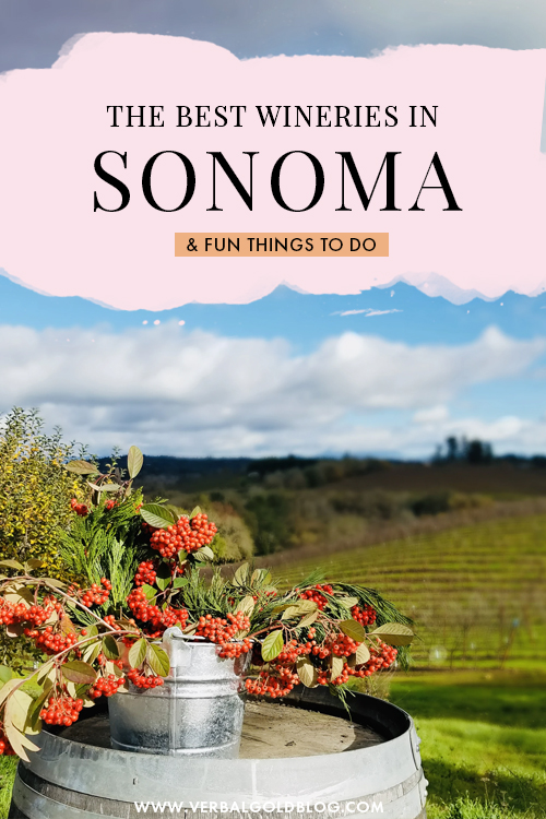 Sonoma Wineries You Must Check Out