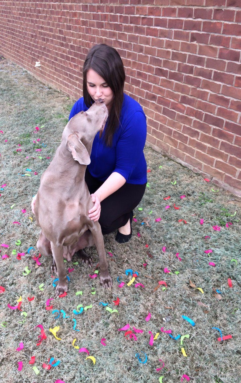 VGB Blog Dog Bailey Turns 12! 6 Ways to Celebrate Your Dog's Birthday!