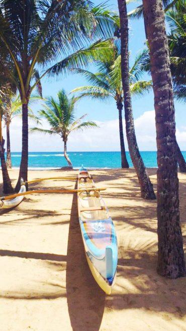 Hawaiian travel guide to maui