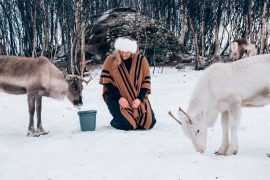 feed the reindeer tromso, Norway travel blogger