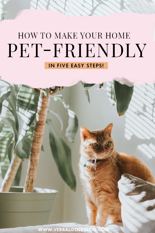 5 Ways You Can Make Your Home More Pet-Friendly